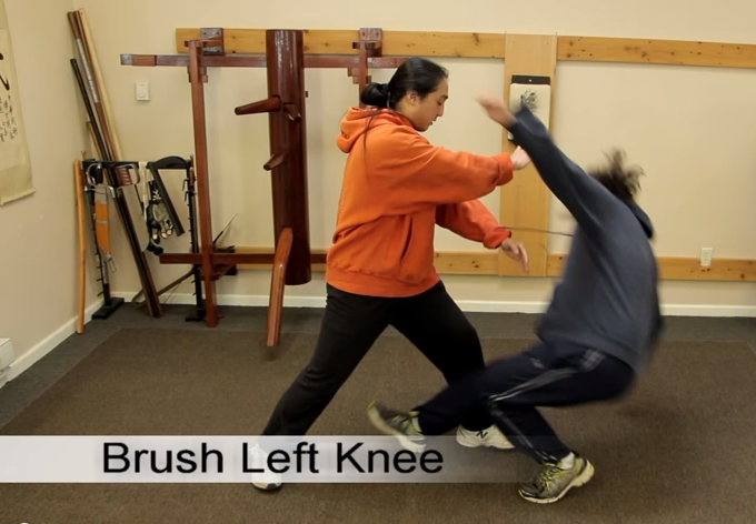 Brush Left Knee_Tai_Chi_Chuan